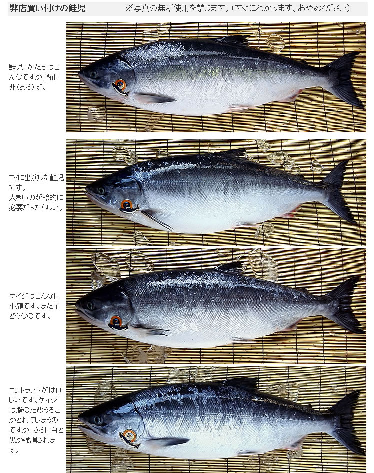Keijiphoto